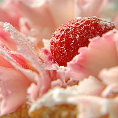 desserts_01